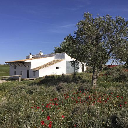 Tu casa rural en navarra reserva online - Tu casa rural ...